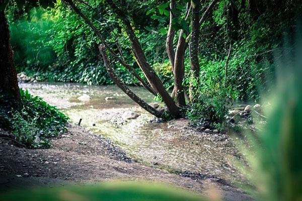 entorno natural moli de xirles